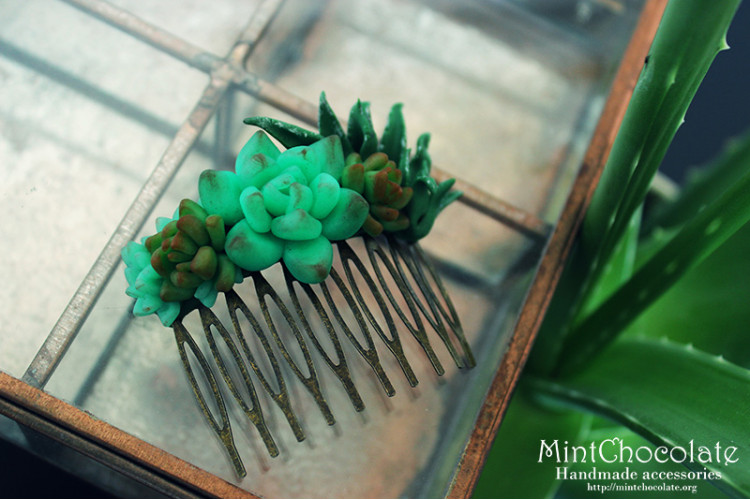 Succulent haircomb