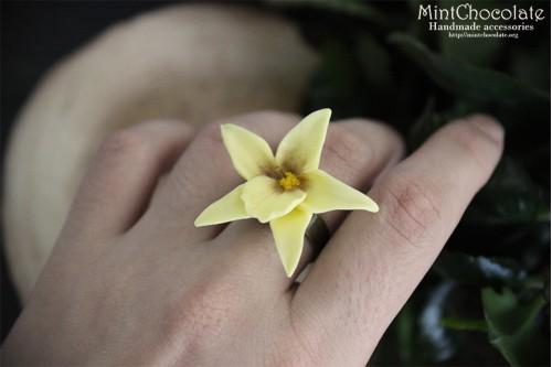 Vanilla ring